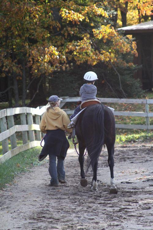 Pony rides (2)