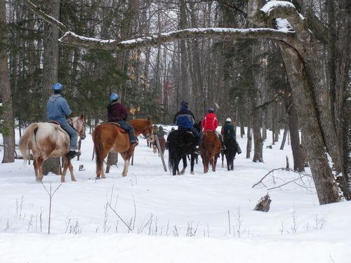 Trail Rides
